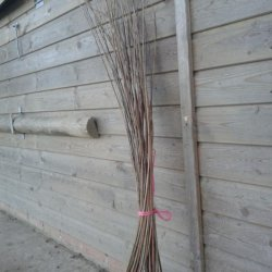 4 foot dried willow bundle