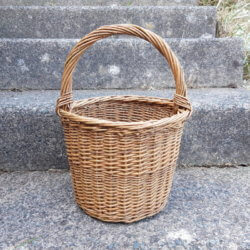 Blackberry basket
