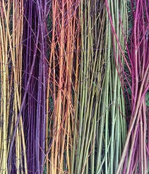 Willow bundles