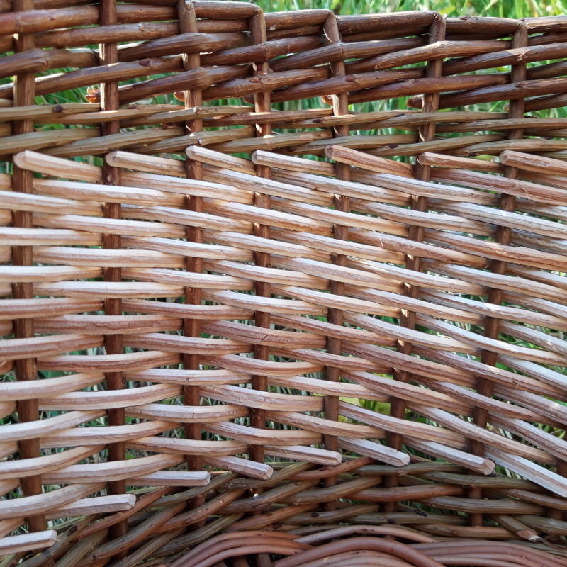 Inside of the cleaved willow basket